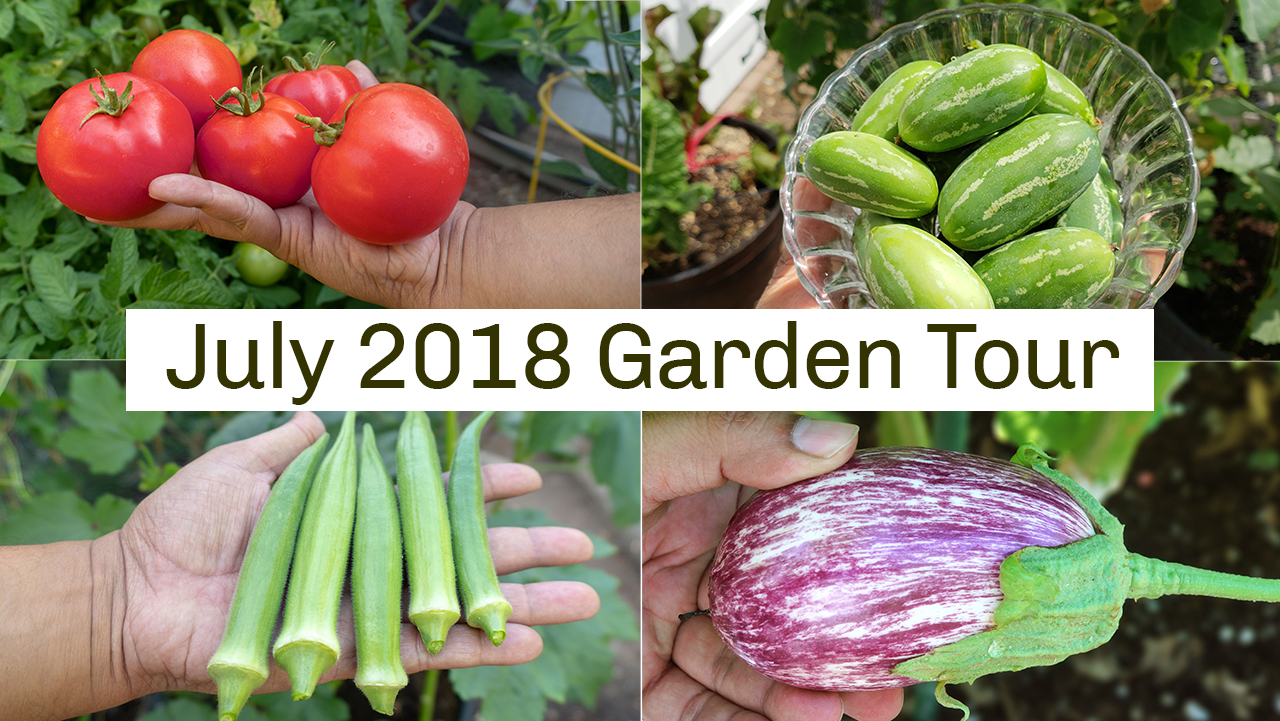 California Gardening Tour July 2018
