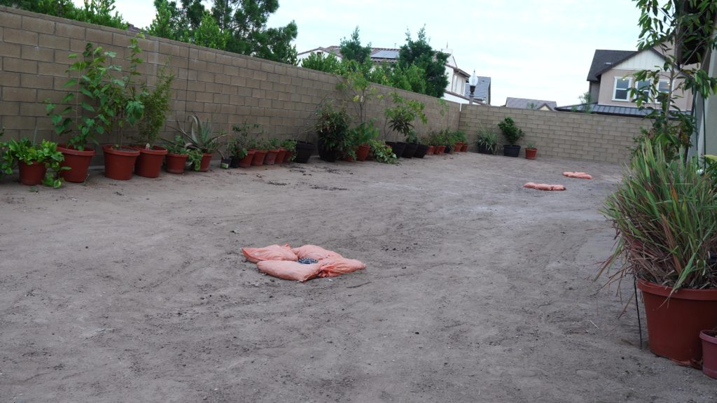 New California Garden - Back yard