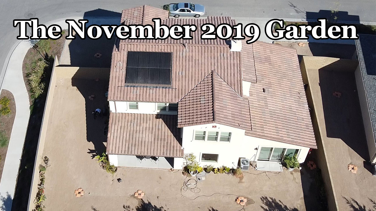 California Gardening November 2019 Garden Tour