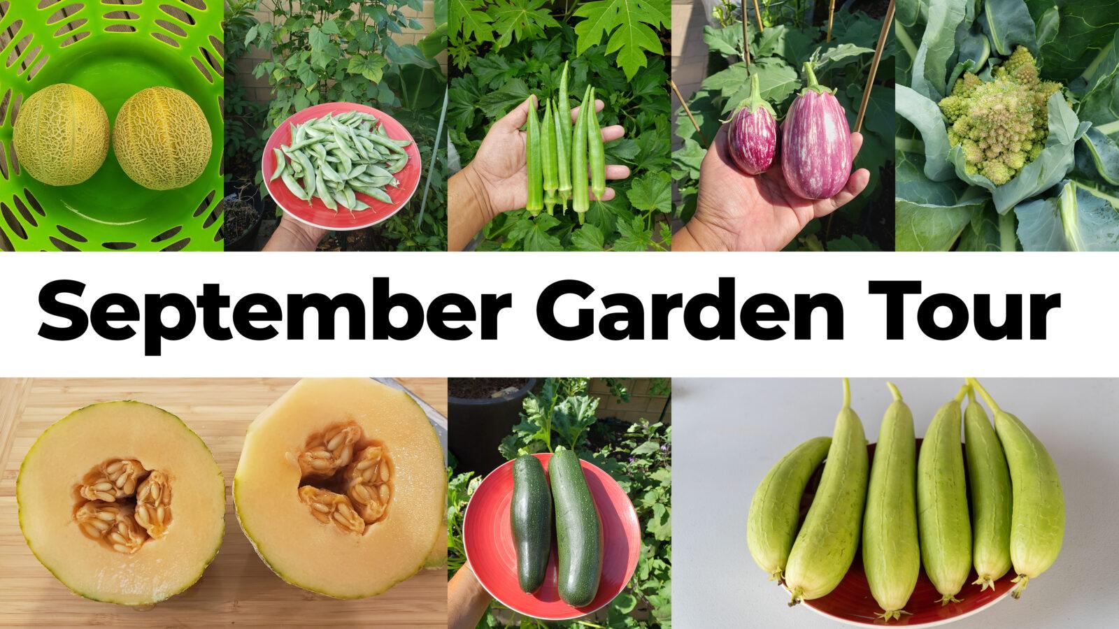 September Garden Tour 2020