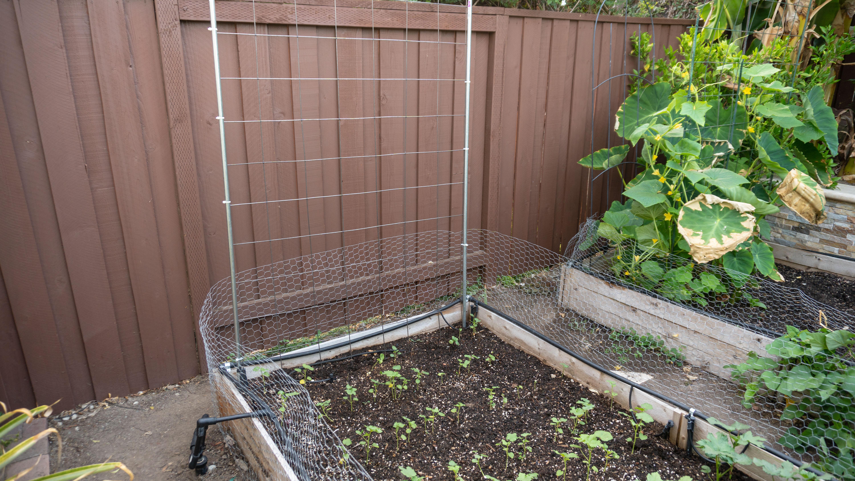 EZ & Cheap Garden Trellis