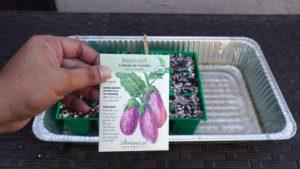SeedPacket
