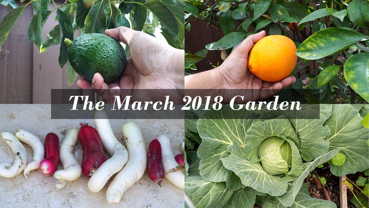 Happy Spring Season! California Garden Tour – March 2018