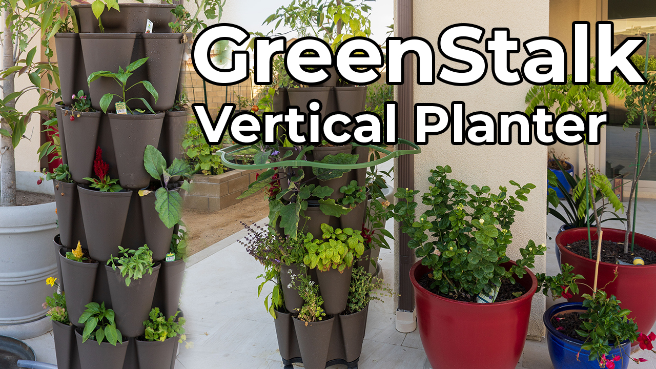 GreenStalk Vertical Planter – How to grow LOTS of plants in a small space