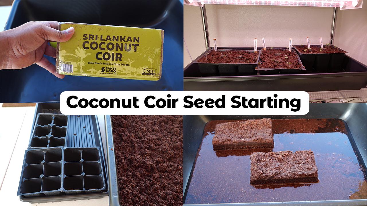 Coconut Coir Seed Starting Mix – Sri Lankan Coco Coir