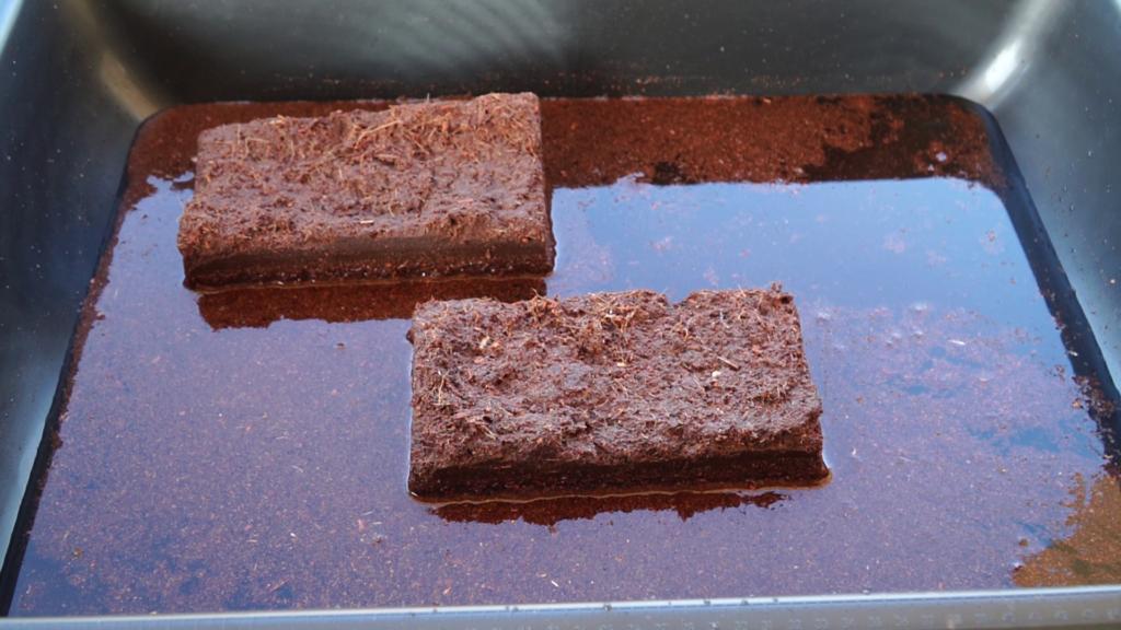 Bricks soaking water and expanding