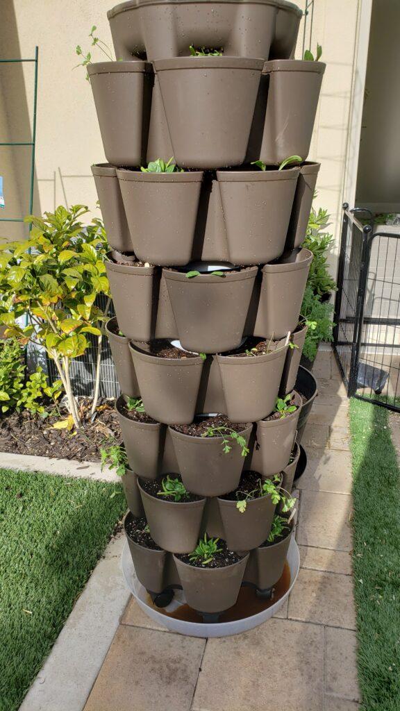 NEW Greenstalk leaf planter